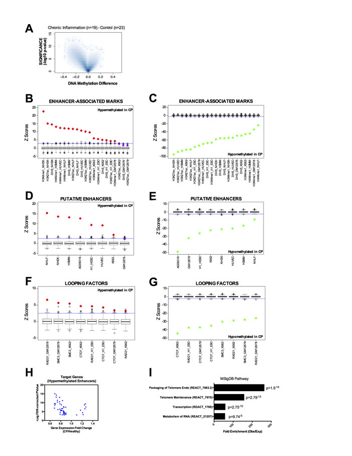 DNA methylation profile in chronic periodontitis highlights an aberrant DNA methylation at transcriptional enhancers.