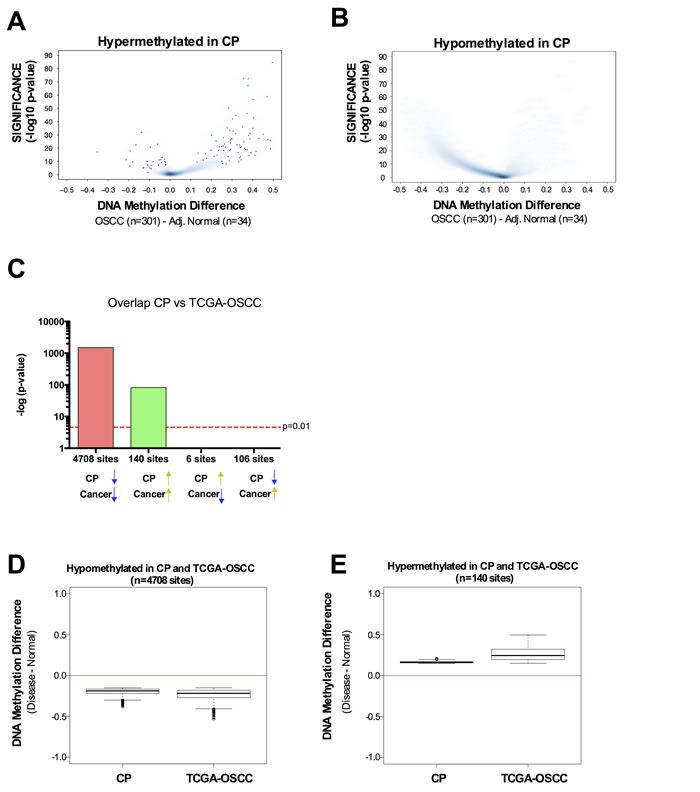 DNA methylation profile in chronic periodontitis highlights a pre-neoplastic DNA methylome.