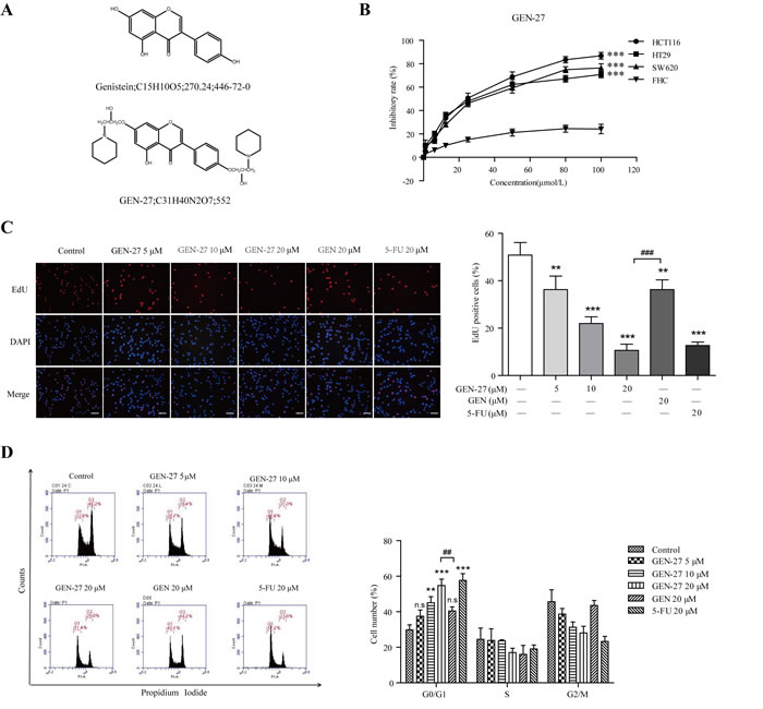 GEN-27 inhibits proliferation of human colorectal carcinoma cells.