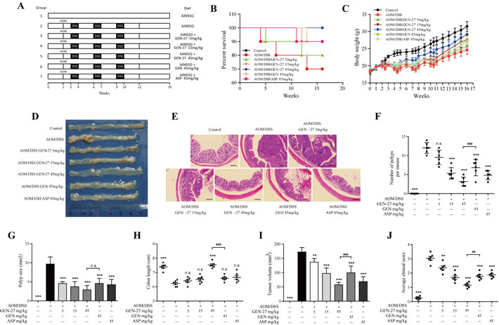 GEN-27 prevents colitis-associated tumorigenesis.