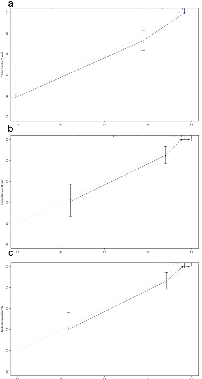 The calibration curve for predicting patient survival at 5 years in the primary cohort.
