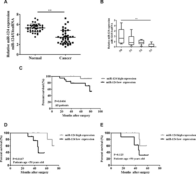Relative miR-124 expression in breast cancer and its relationship with overall survival of breast cancer patients.