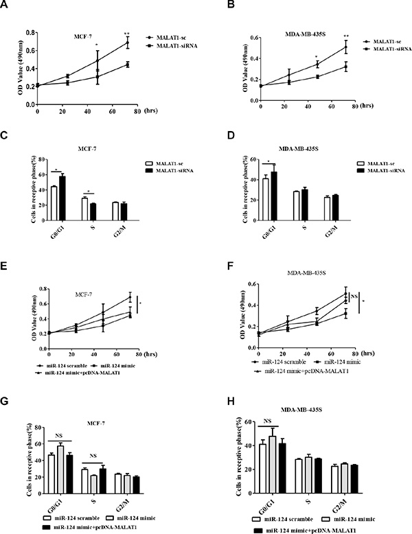 MALAT1 reverses the inhibitory effect of miR-124 on cell proliferation and cell cycle in breast cancer cells in vitro.