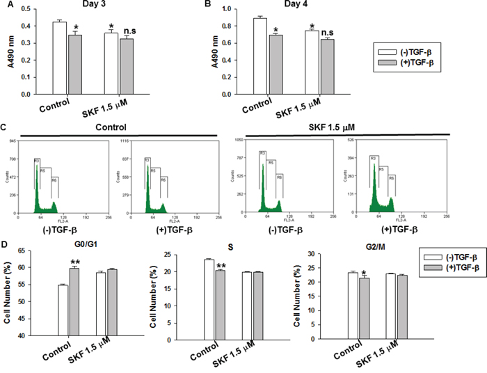 The specific SOCE inhibitor SKF96365 impaired TGF-β-induced suppression of cell proliferation and cell cycle arrest in MDA-MB-231 cells.