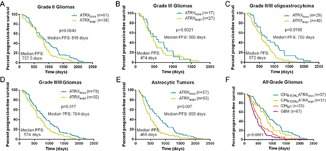 Kaplan-Meier analysis of progression-free survival in patients with ATRX protein loss and expression.