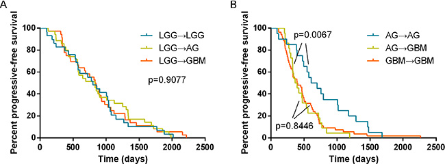 Analysis of the progression-free survival based on the different evolution patterns of gliomas.