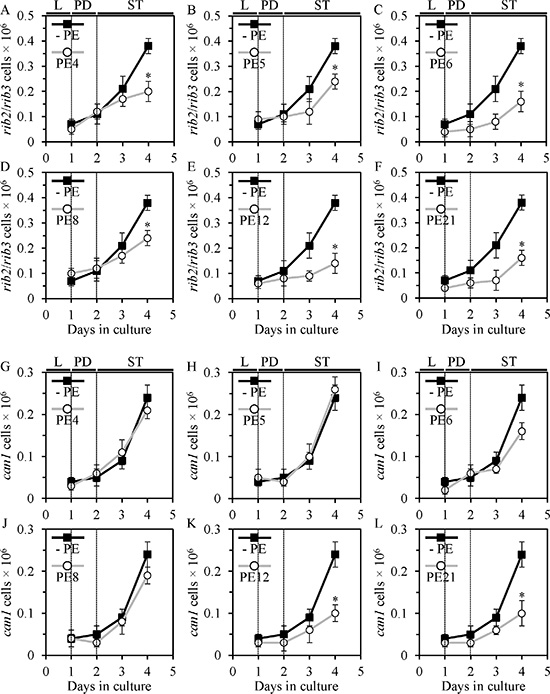 PE4, PE5, PE6, PE8, PE12 and PE21 slow down an age-dependent rise in the frequency of spontaneous point mutations in the rib2 and rib3 loci of mitochondrial DNA (mtDNA) in chronologically aging yeast grown under non-CR conditions. PE12 and PE21, but not PE4, PE5, PE6 or PE8, have similar effects on the frequency of spontaneous point mutations in the CAN1 gene of nuclear DNA (nDNA).