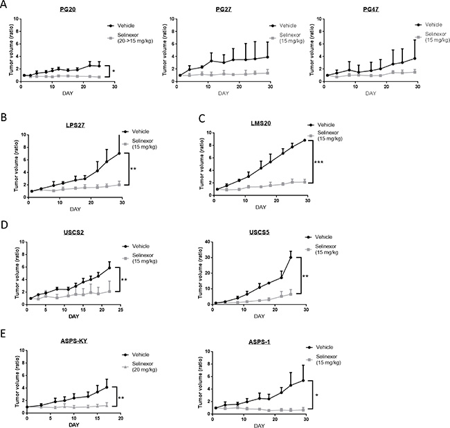Antitumor activity of selinexor in a variety of sarcoma models in vivo.