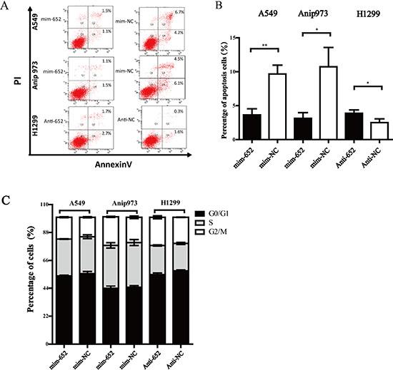MiR-652-3p inhibits cell apoptosis.