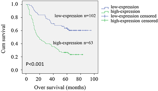 Kaplan–Meier survival analysis of CRMP4 expression in patients with gastric cancer.