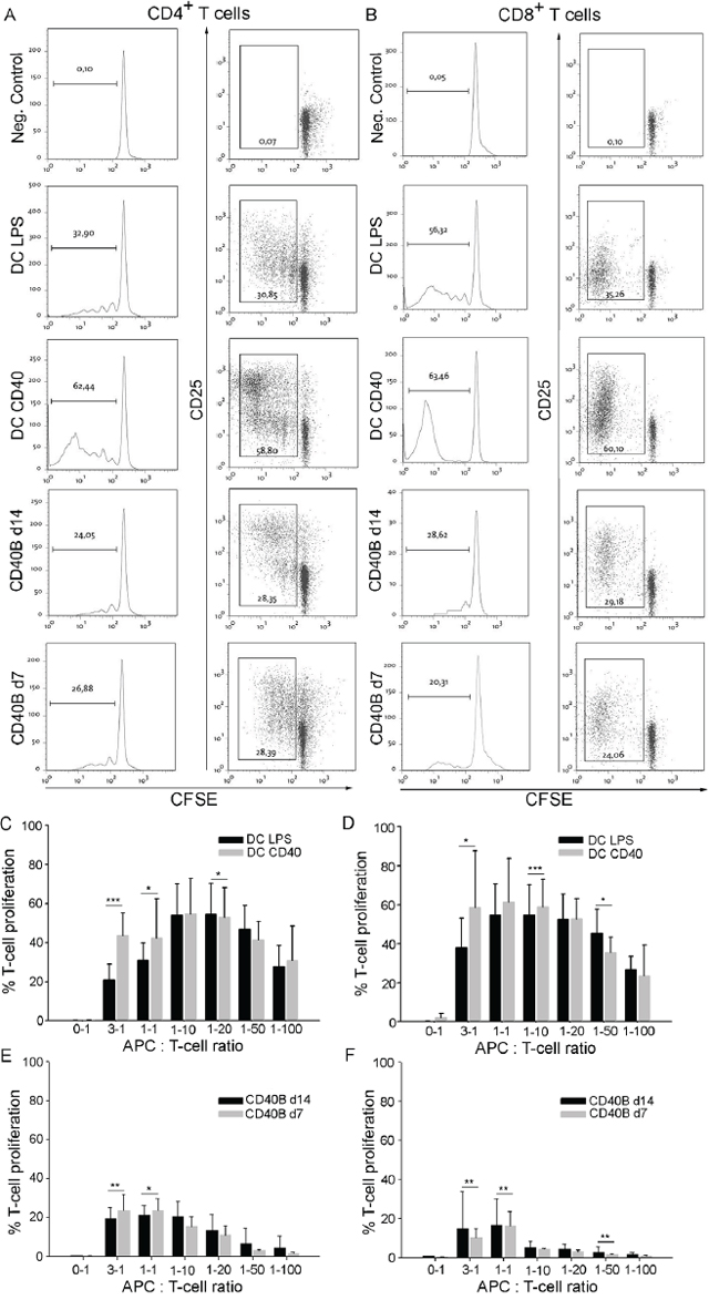 CD40B cells induce T-cell proliferation and activation in allogenic MLRs.
