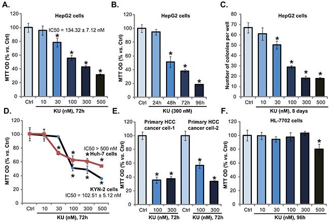KU-0060648 inhibits HCC cell proliferation.
