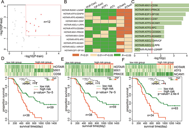 lncRNA triplets were associated with GBM prognosis.
