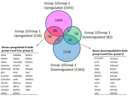 Differentially-expressed genes in familial SFs with distinct CDKN2A mutations.