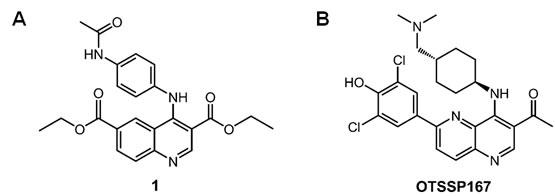 Novel MELK inhibitors.