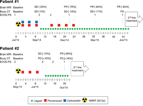 Treatment schema of NSCLC BM patients.