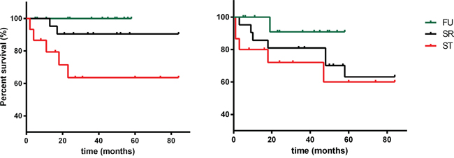 Overall survival (OS) and progression-free survival (PFS) of patients who have undergone follow-up (FU), surgical resection (SR) and systemic therapy (ST), respectively.