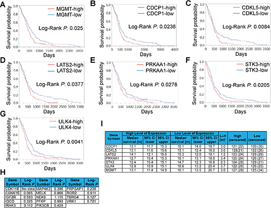 Expression of SKGs correlates with GBM prognosis.