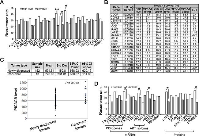 Expression of SKGs correlates with the incidence rate and prognosis of recurrent GBMs.