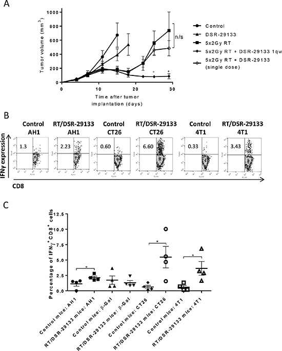 Efficacy of DSR-29133 dosed 1qw can be improved by combination with fractionated RT and leads to expansion of tumor antigen-specific CD8+ T-cells.