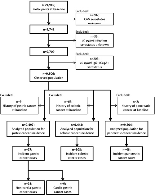Flow chart for selection of the study population.