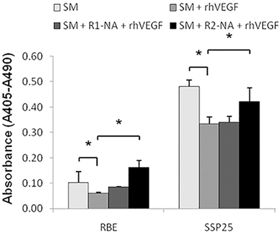 The VEGFR2 played an essential role on anti-apoptotic cell growth in ICC.
