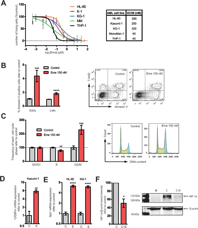 Emetine treatment reduced cell viability, induced apoptosis, prompted AML cells towards differentiation and downregulated HIF-1α.