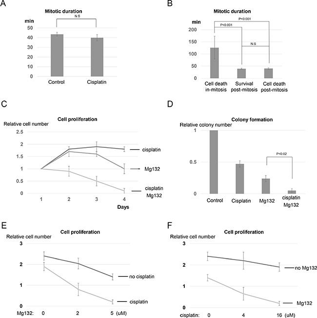 Targeting mitotic exit sensitizes cisplatin response by promoting mitotic cell death.