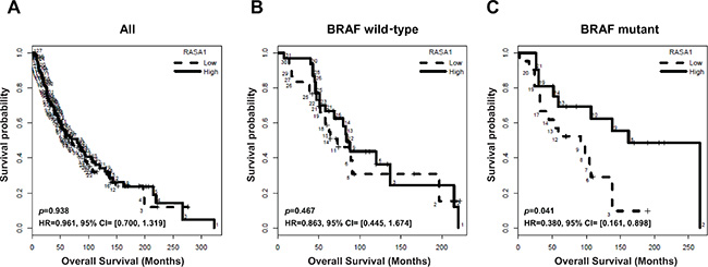 Association of RASA1 mRNA level with overall survival of melanoma patients.