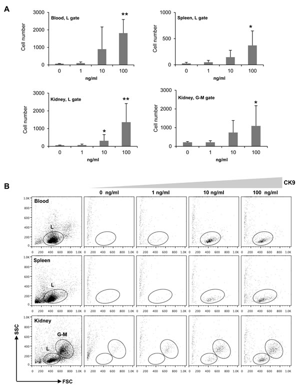 Chemotactic activity of CK9 on rainbow trout leukocyte populations.