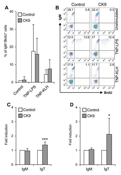 Effect of CK9 on IgM