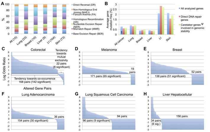 Analysis of DNA repair mutations by repair pathway, direct or indirect classification, and co-occurrence or mutual exclusivity between tumors