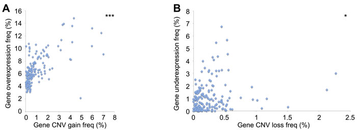Association between DNA repair CNV and gene expression