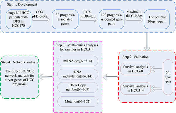The workflow for construction and validation of the prognostic signature.