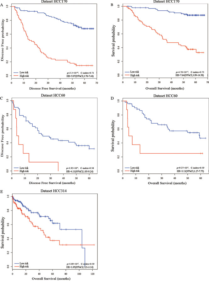 The Kaplan-Meier curves of disease-free survival and overall survival for prognostic groups predicted by the 20-gene-pair in the training and validation datasets.