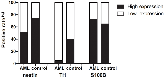 Positive rate of nerve-related molecules expression in AML patients and controls.