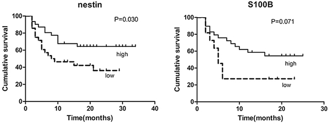 Kaplan-Meier survival plots for overall survival of all patients by the expression of nestin and S100B.