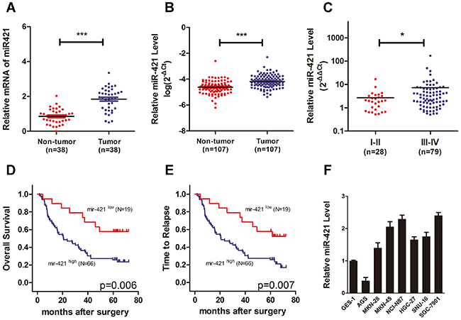 MiR-421 is increased in gastric cancer and associated with poor prognosis.