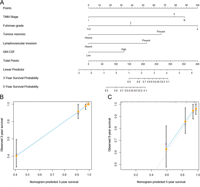 Nomogram for predicting 3- and 5-year recurrence-free survival (RFS) of clinically localized ccRCC patients after surgery.