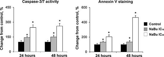 Apoptosis in the rat HCC JM1 cells.