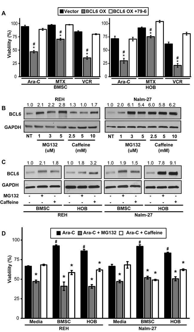 Forced expression of BCL6 sensitizes PD ALL cells to chemotherapy exposure.