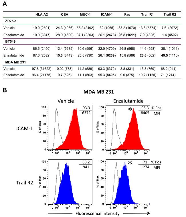 Flow cytometric analysis of surface marker expression on breast cancer cell lines exposed to enzalutamide.