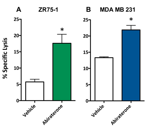 Abiratirone increases the sensitivity of breast cancer cells to T cell-mediated lysis regardless of androgen receptor (AR) expression.