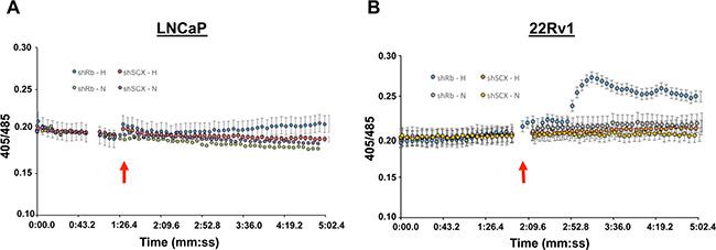 Kisspeptin-10 activates calcium signaling in 22Rv1 cells.