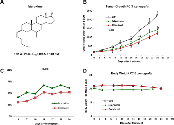 Anti-cancer activity of istaroxime in PC-3 prostate cancer xenografts.