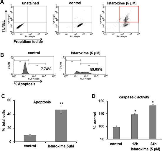 Istaroxime induces apoptosis and caspase-3 activation in prostate cancer cells.