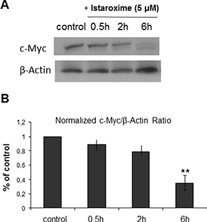 Istaroxime reduces c-Myc expression in prostate cancer cells.