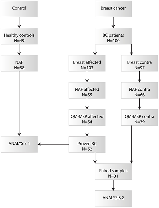 Flow chart of the collected nipple fluid samples that have been analysed by QM-MSP.