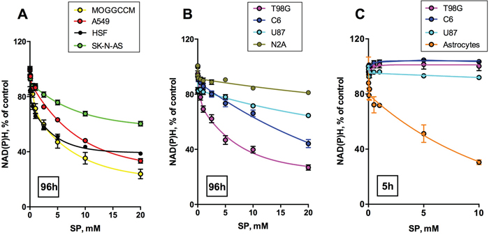 Concentration dependence of cellular viability on the OGDH inhibitor SP.