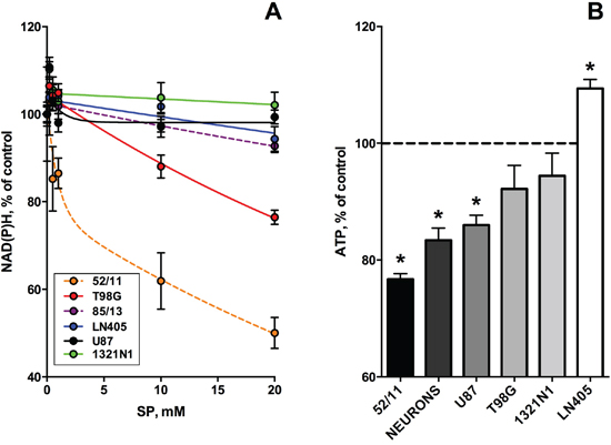 Dependence of viabilities of different glioblastoma cells on the OGDH inhibitor SP.